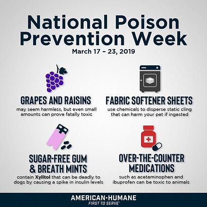 AH_PoisonAwareness2-2-1024x1024.png