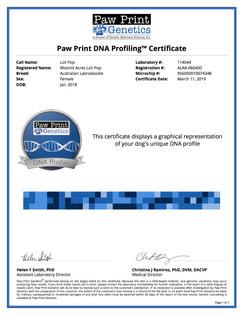 DNA Profile Loli Pop.jpg