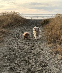 Chloe & her best friend Zelda
