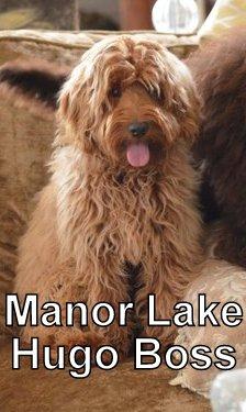 Dad: Manor Lake Hugo