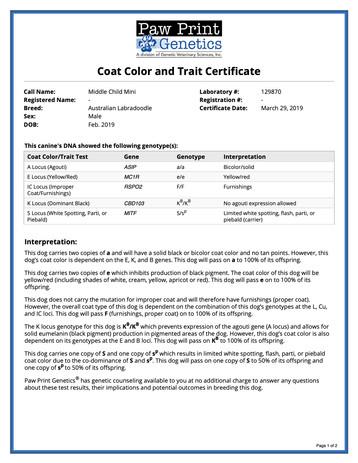 Oliver Twist Color Coat & Trait.jpg