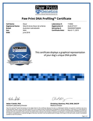 DNA Profile Oscar.jpg