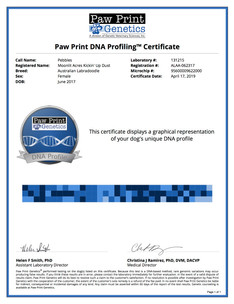 Pebbles DNA Profile.jpg