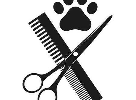 The COVID19 Grooming Resource 🐶