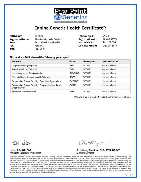 Genetic Certificate Truffles.jpg
