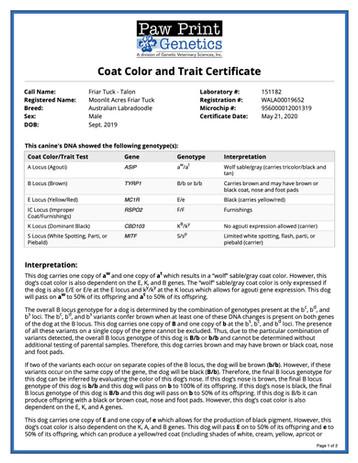 Friar Tuck Color Trait.jpg