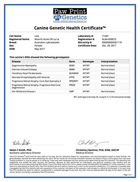 Genetic Testing Lola.jpg