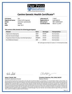 Genetic Disease.jpg