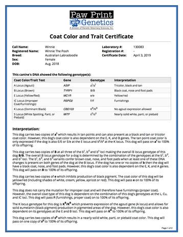 Color Coat Trait.jpg