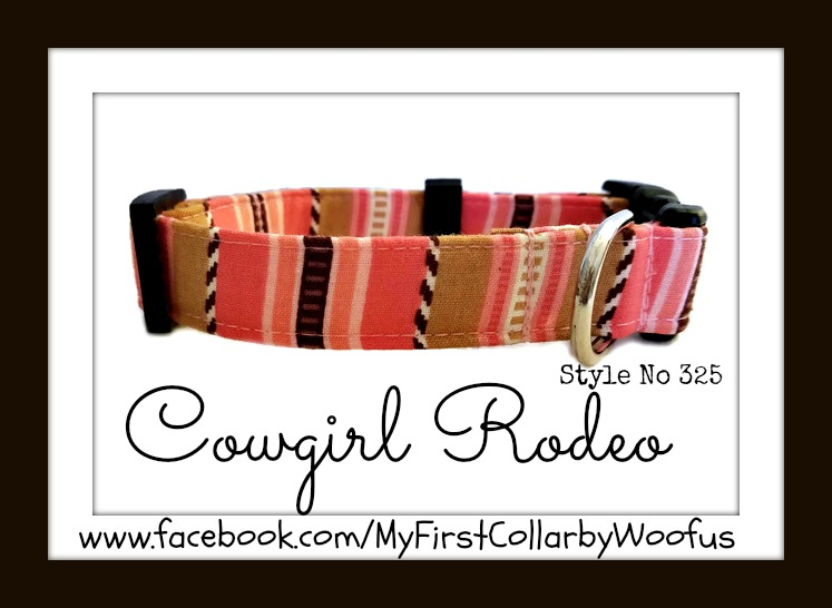 Cowgirl Rodeo 325