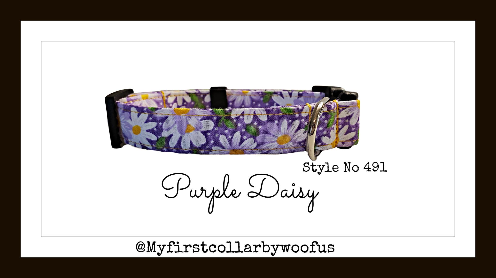 Purple Daisy 491