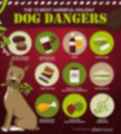 DogDangers-holiday-graphic.jpg