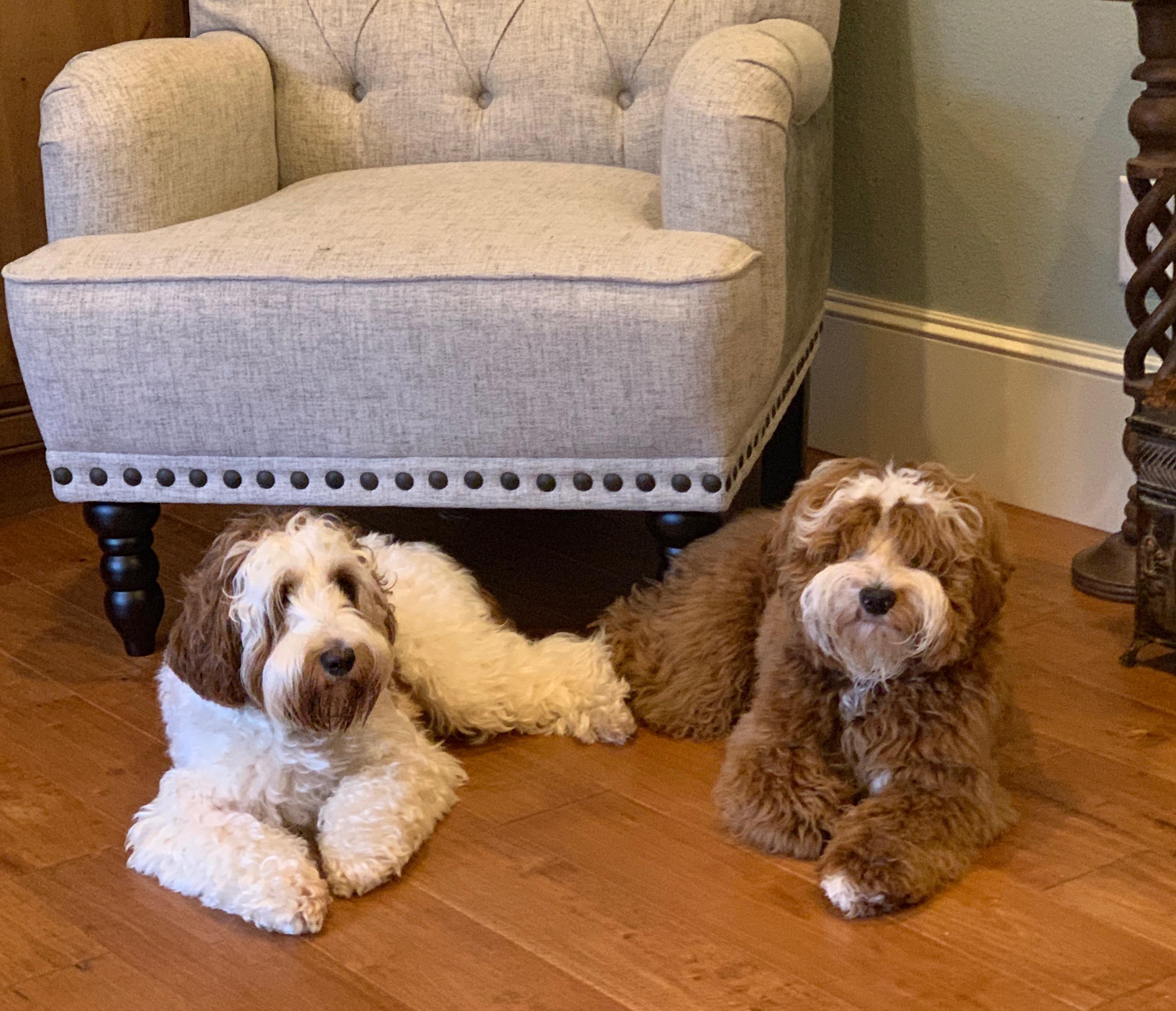 Ruby & Hudson