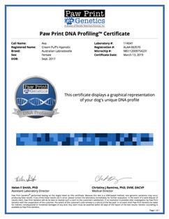 DNA Profile Ava.jpg