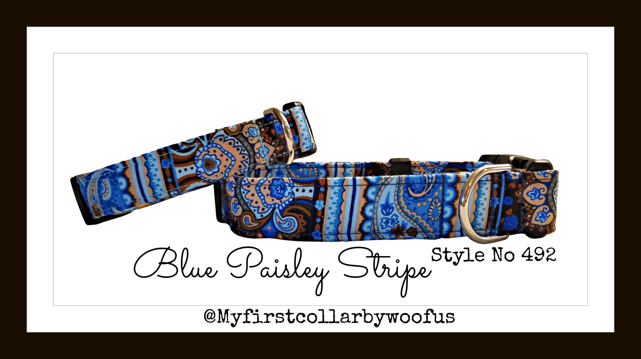 Blue Paisley Stripe 492