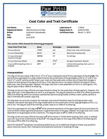 Color & Coat Trait.jpg