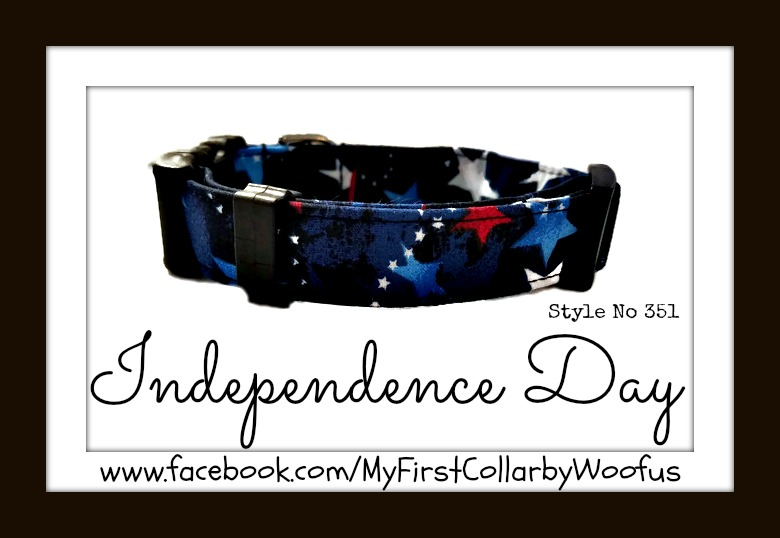 Independence Day 351