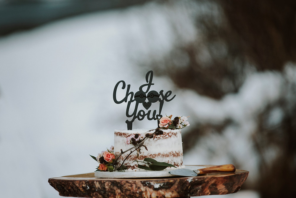 Mini cake for two, Alaska Elopement with cake