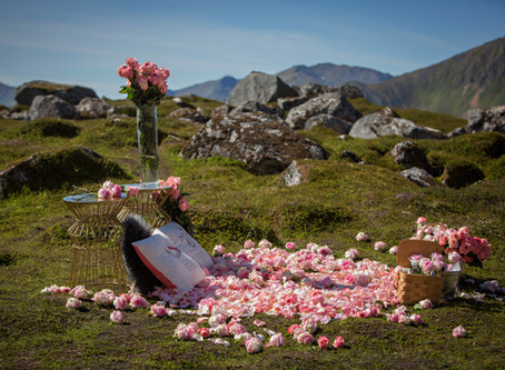 Rose Bed Marriage Proposal in the Mountains