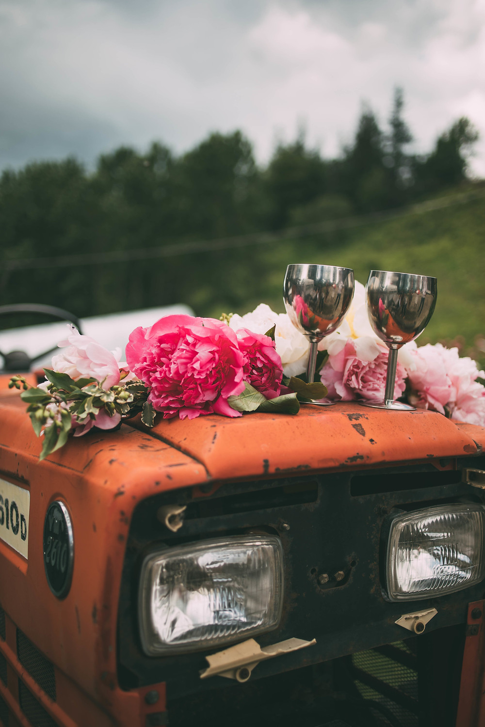 peonies on tractor, scenic place peony farm, field to vase dinner, wedding and event venue, homer, alaska, AK
