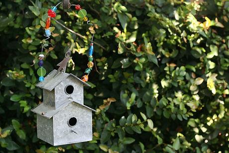 bird-house-85728_1920.jpg
