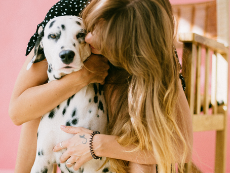 Capturing Doggone Cute Photos - Photo Shoots with Dogs - My Tips as a Freelance Producer