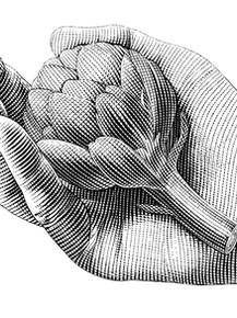 Artichoke Hand