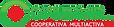 logo_copservir.png