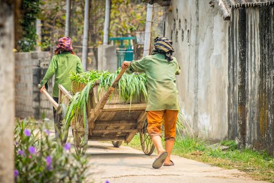 Vietnam #37