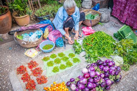 Laos #13
