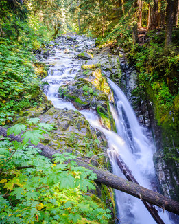 Sol Duc Falls.jpg