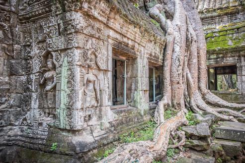 Cambodia #16