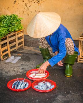 Vietnam #8