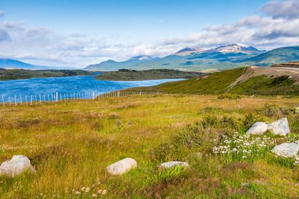Fields of Patagonia.jpg