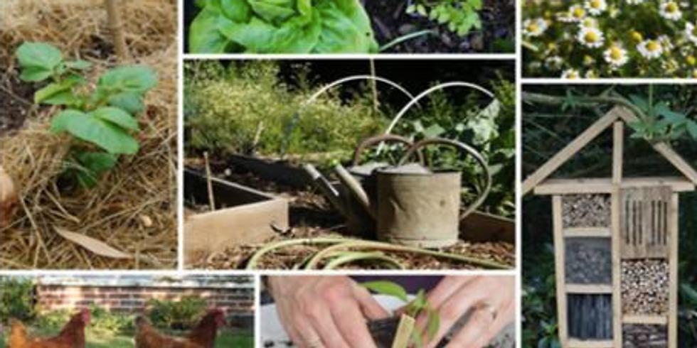 Atelier : Découverte de la permaculture