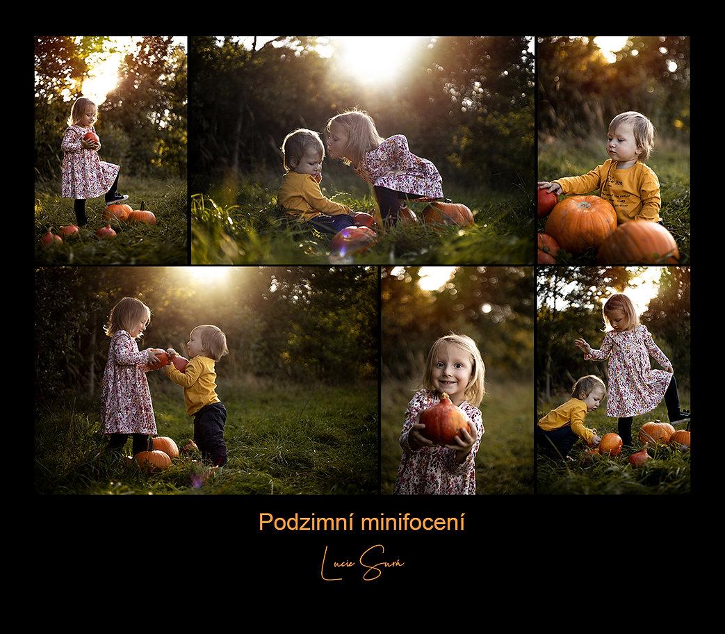 podzim black.jpg