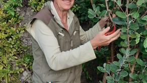 Christine Arlot-Chasseguet, Présidente de l'Association « Les Arbusticulteurs »