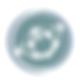 atlas logo (1).png