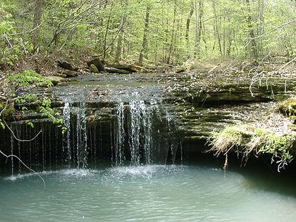 Dry Creek 008.jpg