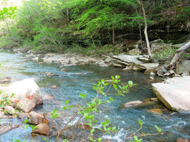 Murry Creek 1690.JPG