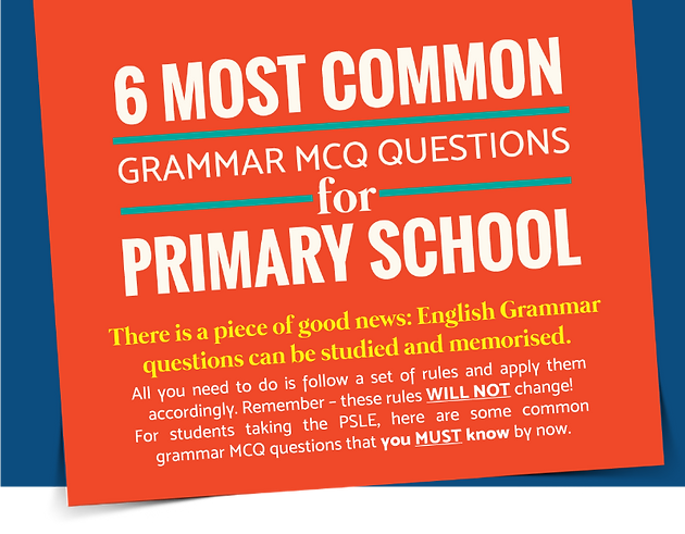 Primary Level English: 6 Common Grammar MCQ Questions