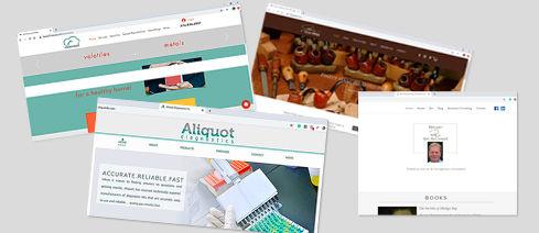 website projects2.jpg