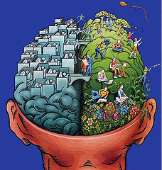 Didieji galvos smegenų pusrutuliai