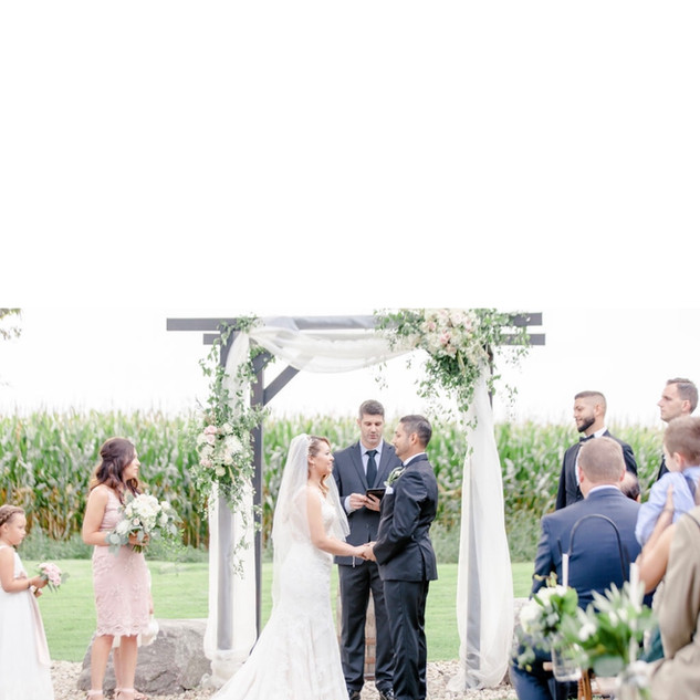 Vine & Branch Photo