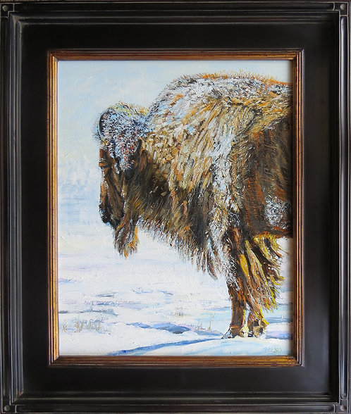 Winter Buffalo 16x20