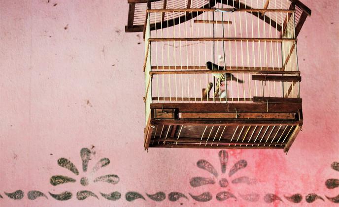 Espera#1©Regina_Rocha Pitta_.jpg