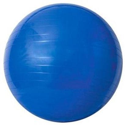 Gym Ball - Com Bomba de ar 65cm