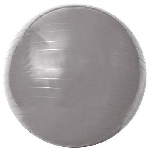 Gym Ball - Com Bomba de ar  55 cm