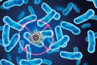 bacteria-killing-virus.jpg