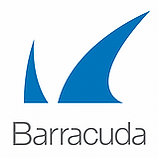 BARRACUDA.webp